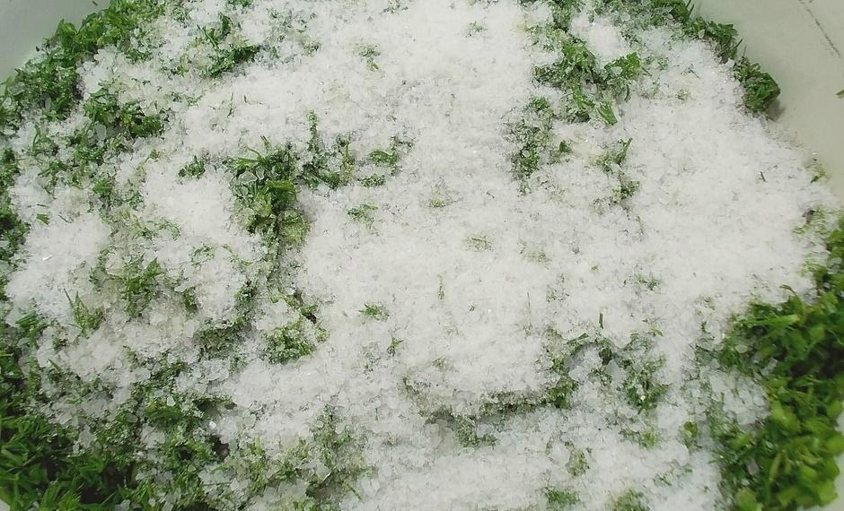 Укроп солёный на зиму